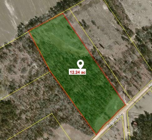 1 D Angela Road, Wagener, SC 29164 (MLS #430313) :: Melton Realty Partners