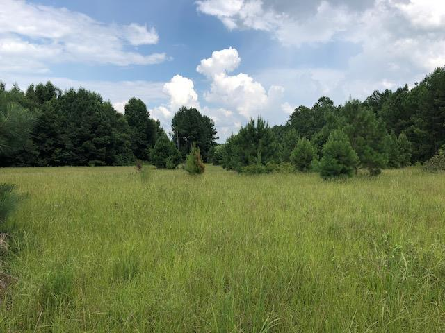00 Cason Pond Road, Warrenton, GA 30828 (MLS #430319) :: Southeastern Residential