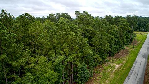 5375 Cemetery Road, Grovetown, GA 30813 (MLS #430767) :: Brandi Young Realtor®