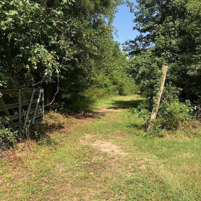 1639 Baker Place Lane, Grovetown, GA 30813 (MLS #430926) :: Melton Realty Partners