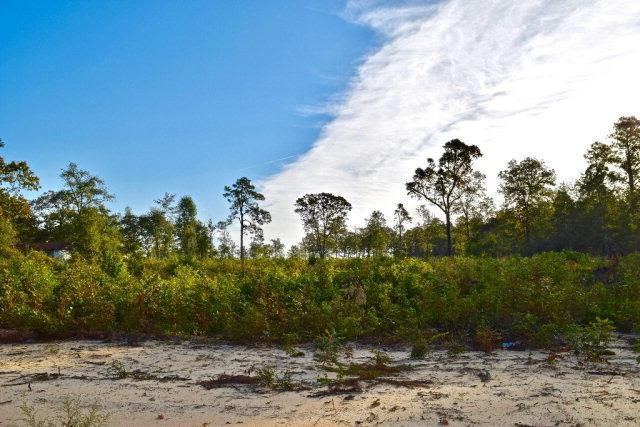 0 Whiskey Road, Aiken, SC 29803 (MLS #433937) :: Young & Partners