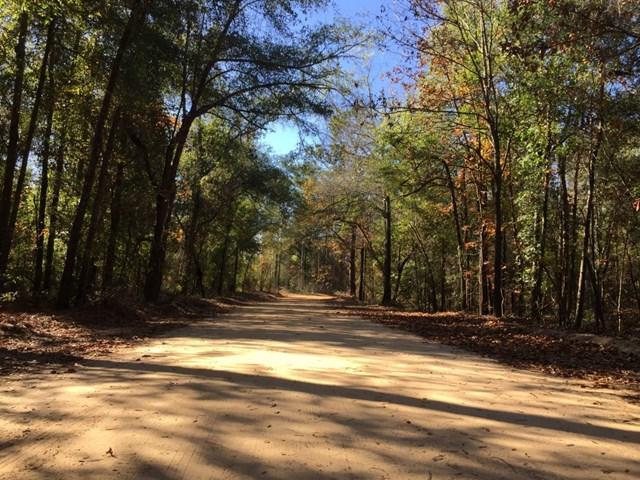 000 Club Circle Road, Waynesboro, GA 30830 (MLS #434531) :: Melton Realty Partners