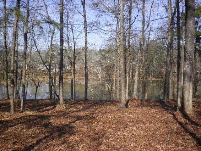 1592 River Island Pkwy, Evans, GA 30809 (MLS #435149) :: Shannon Rollings Real Estate