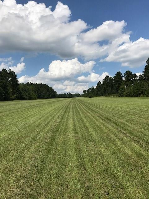 Lot 7 Burkelo Road, Wagener, SC 29164 (MLS #436122) :: Venus Morris Griffin | Meybohm Real Estate