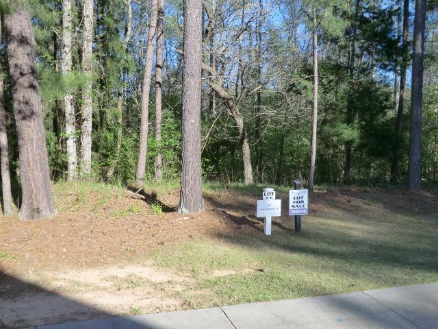 20 Independent Hill Lane, North Augusta, SC 29860 (MLS #437078) :: Southeastern Residential