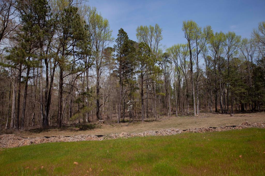 855 Little River Lane - Photo 1