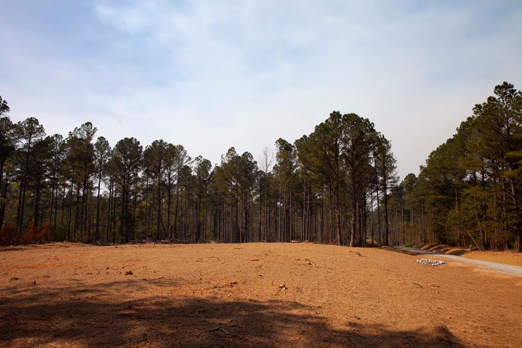 130 Lake Ridge Trail - Photo 1