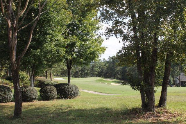 157 Red Cedar Road, Aiken, SC 29803 (MLS #442698) :: Meybohm Real Estate