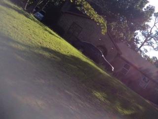 3718 Raintree Drive, Hephzibah, GA 30815 (MLS #443901) :: Southeastern Residential