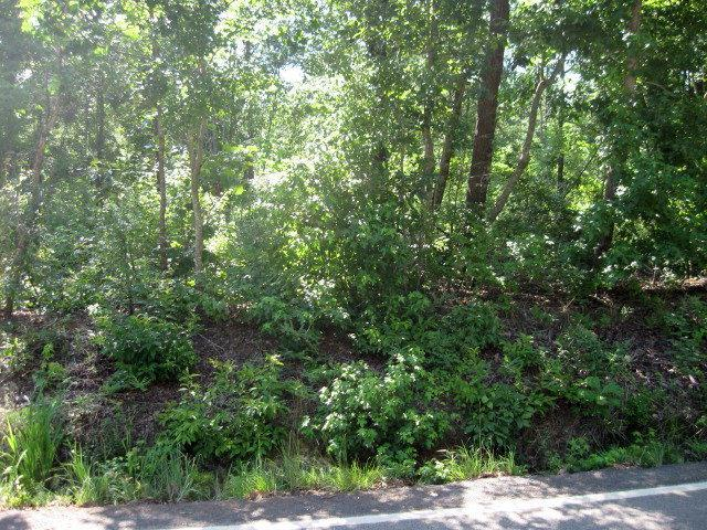 0 Weaver Road Lot D, Johnston, SC 29832 (MLS #444089) :: Southeastern Residential
