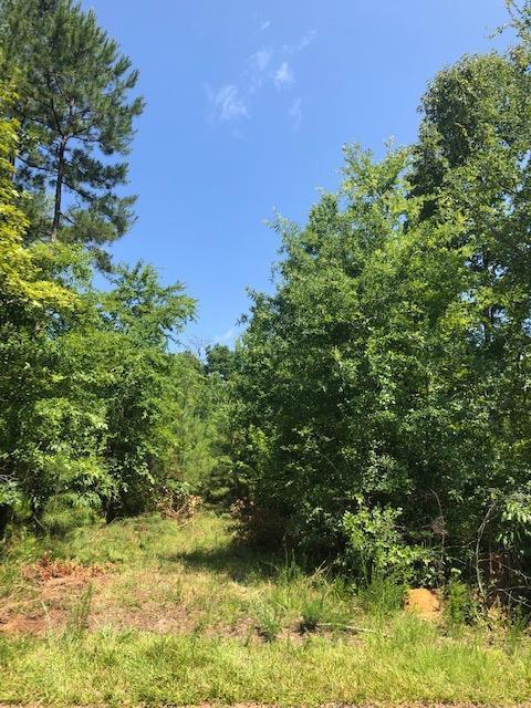 5233 Riverwood Plantation, Evans, GA 30809 (MLS #444434) :: Shannon Rollings Real Estate