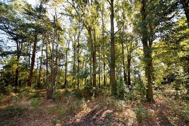 LOT 0 Coward Road, Aiken, SC 29803 (MLS #446091) :: Shannon Rollings Real Estate