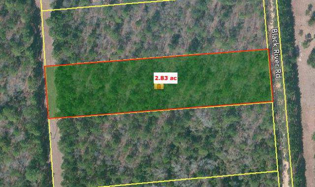 Lot 16 Black River Road, Windsor, SC 29812 (MLS #446311) :: The Starnes Group LLC