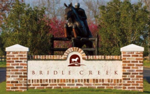 Lot 1 Bridle Creek Trail - Photo 1