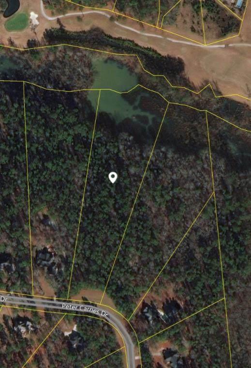 0 Peter Carnes Drive, North Augusta, SC 29860 (MLS #451644) :: The Starnes Group LLC