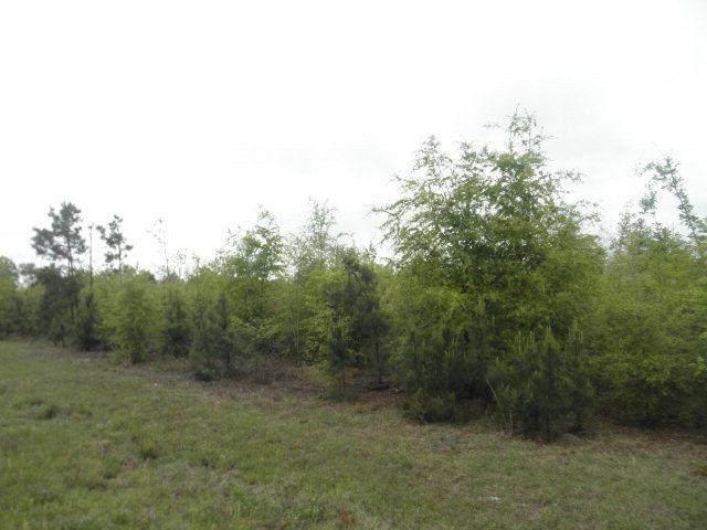 Tract B Knob Hill Farm Road, Evans, GA 30809 (MLS #451776) :: Southeastern Residential