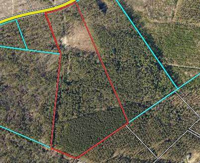 Lot 2 White Pond Road, Aiken, SC 29803 (MLS #452310) :: Young & Partners