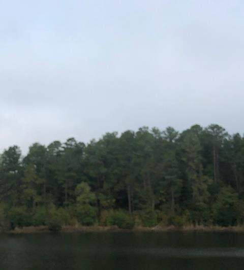 65 Roper Court, North Augusta, SC 29860 (MLS #453172) :: Better Homes and Gardens Real Estate Executive Partners