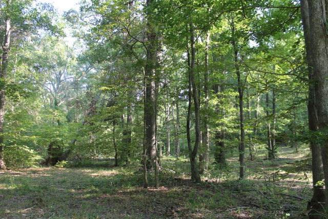 Lot 6 Gregory Lake Road, North Augusta, SC 29860 (MLS #455333) :: Shannon Rollings Real Estate