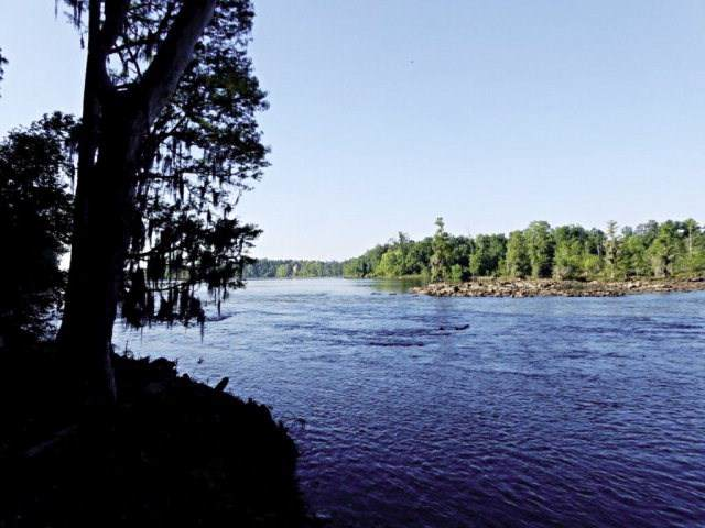 186 Altamaha, North Augusta, SC 29841 (MLS #456967) :: Melton Realty Partners