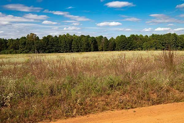0000000 Old Stapleton Road, Stapleton, GA 30823 (MLS #461460) :: RE/MAX River Realty