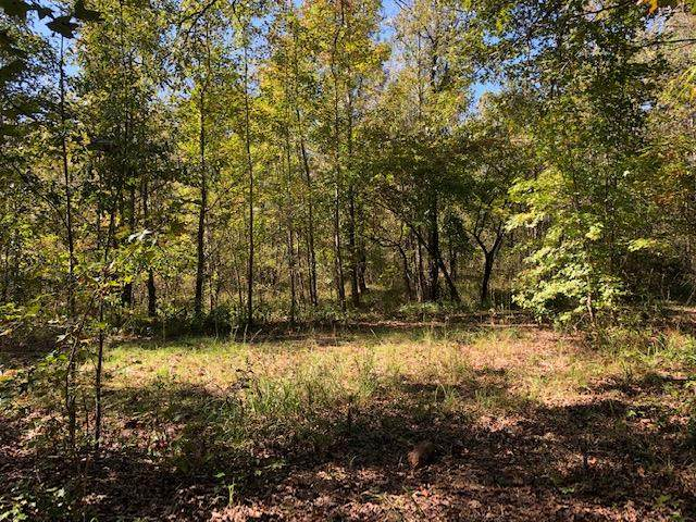 Lot 38 S Pointe Drive, Tignall, GA 30668 (MLS #461848) :: McArthur & Barnes Partners | Meybohm Real Estate