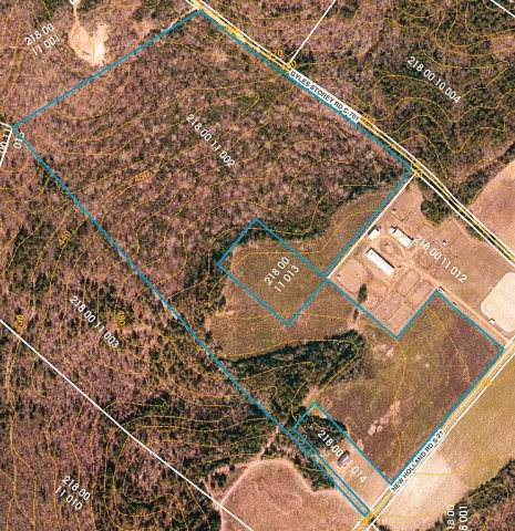 39.81 Ac New Holland Road, Wagener, SC 29164 (MLS #462337) :: RE/MAX River Realty