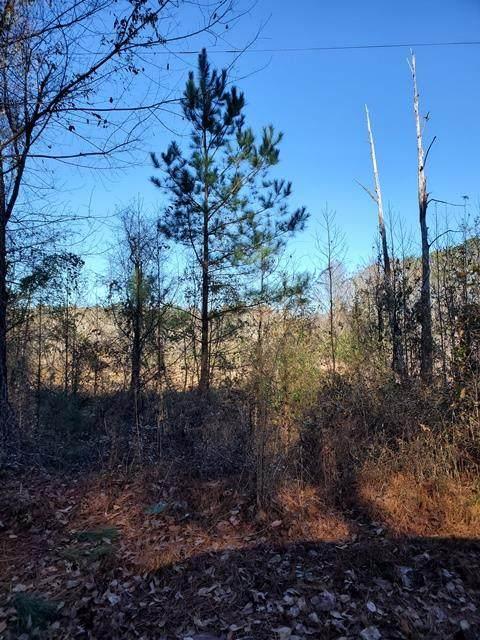 TBD Carolina Springs Spur - Photo 1