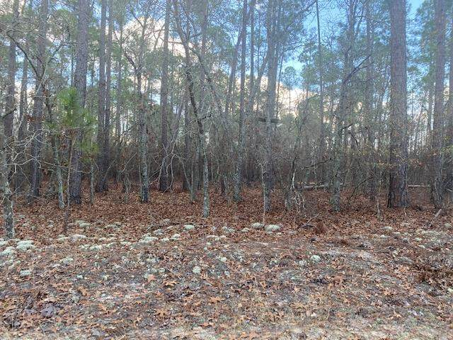 00 Stag Drive, Williston, SC 29853 (MLS #464444) :: Young & Partners