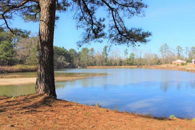 3010 Happy Road, Augusta, GA 30906 (MLS #465202) :: Melton Realty Partners