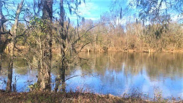 225 Rivers Run, Waynesboro, GA 30830 (MLS #466438) :: McArthur & Barnes Partners | Meybohm Real Estate