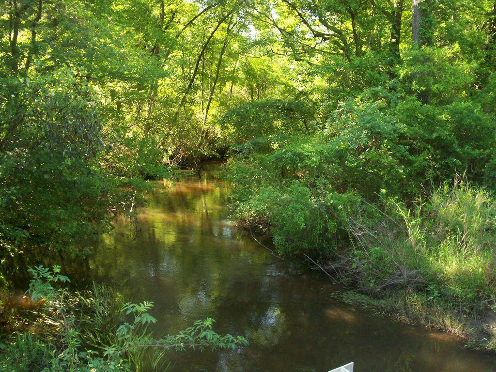 0 Reynolds Pond Road - Photo 1