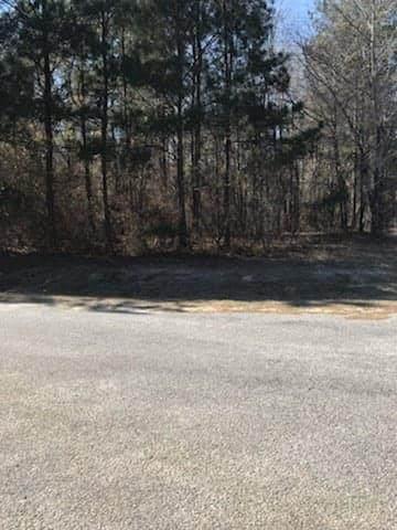 0-15 E Mini Farms Road, Keysville, GA 30816 (MLS #467097) :: Shaw & Scelsi Partners