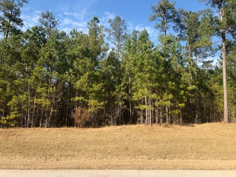 Lot 6B Savannah Bay Drive - Photo 1