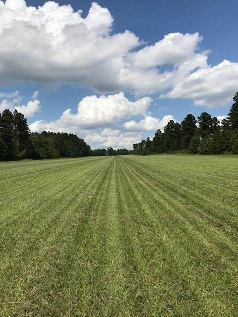 Lot 8 Burkelo Road, Wagener, SC 29164 (MLS #467128) :: Better Homes and Gardens Real Estate Executive Partners