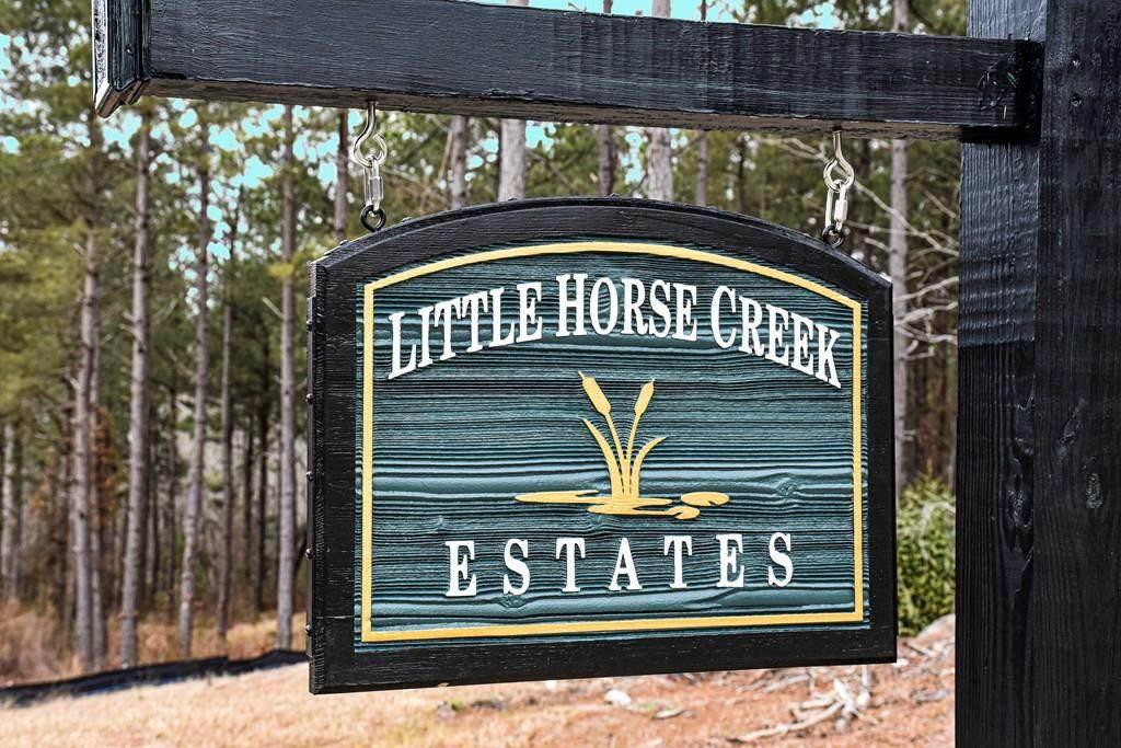 Lot 4 Little Horse Creek Drive - Photo 1