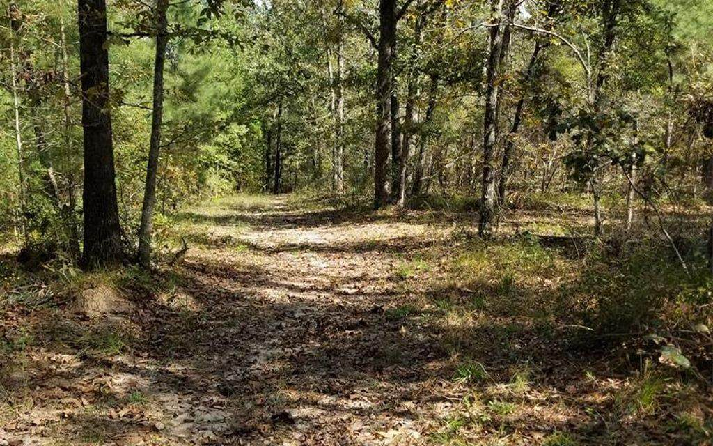 761 Horse Creek Road - Photo 1