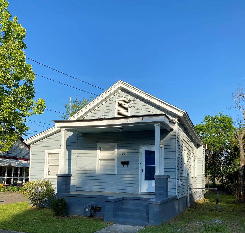 217 Perkins Street - Photo 1