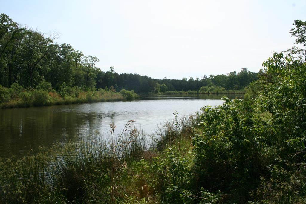 1046 Hidden Lake Court - Photo 1