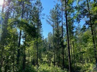 00 New Cut Road, Edgefield, SC 29824 (MLS #471454) :: RE/MAX River Realty