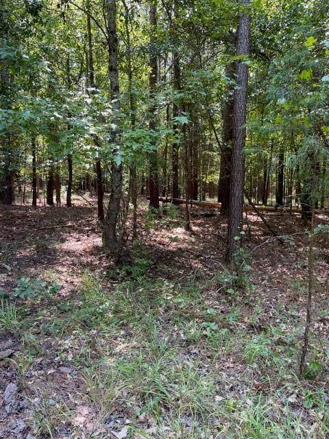 Lot 59 Eagle Pointe, Lincolnton, GA 30817 (MLS #474072) :: Shannon Rollings Real Estate