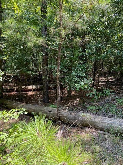 Lot 67 Wisteria Drive, Lincolnton, GA 30817 (MLS #474080) :: Shannon Rollings Real Estate