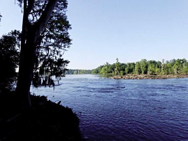 170 Altamaha Drive, North Augusta, SC 29841 (MLS #474356) :: For Sale By Joe | Meybohm Real Estate