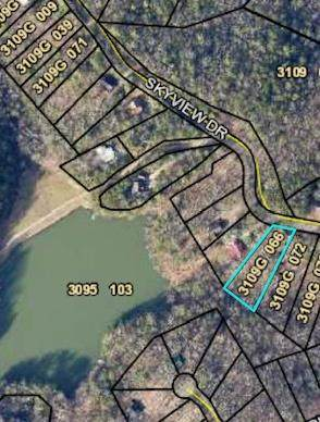 00 Skyview Drive, Ellijay, GA 30536 (MLS #474617) :: RE/MAX River Realty