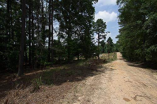 1115 White Oak Circle, Grovetown, GA 30813 (MLS #475518) :: For Sale By Joe | Meybohm Real Estate