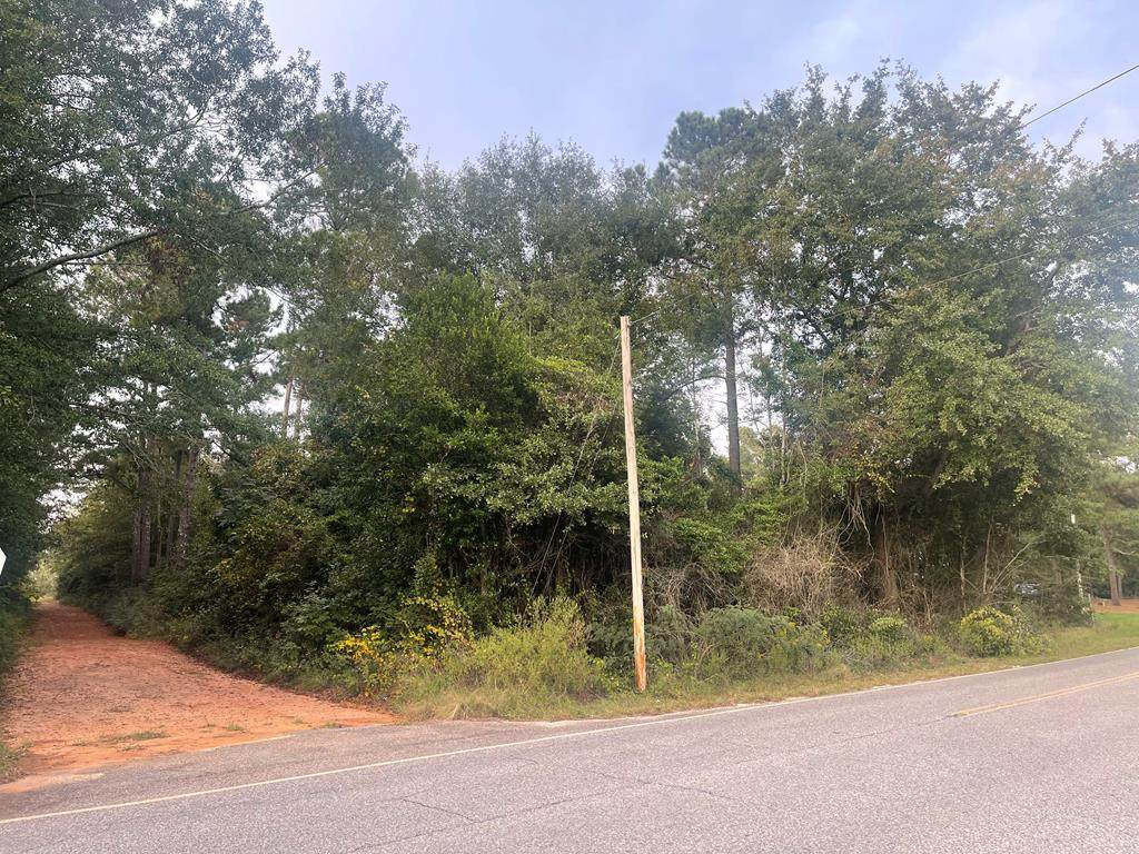 0 Dry Branch Road - Photo 1