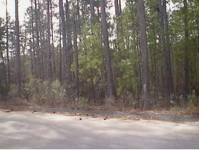 0 Story Drive, Appling, GA 30802 (MLS #314395) :: Shannon Rollings Real Estate