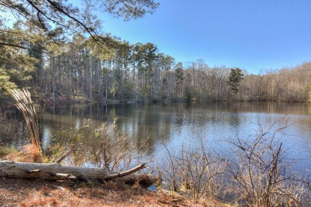 Lot 14 Lake Avenue, Harlem, GA 30814 (MLS #410264) :: Brandi Young Realtor®