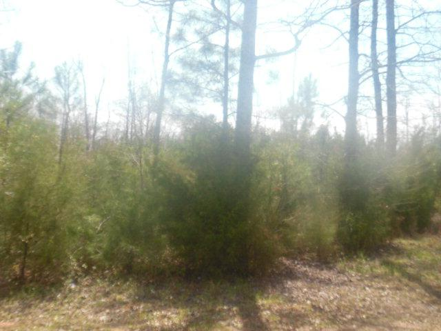 Lot 30A Lakeshore Estate Drive, Lincolnton, GA 30817 (MLS #411120) :: Young & Partners