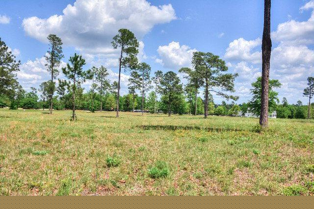 001 Three Runs Plantation Drive, Aiken, SC 29803 (MLS #411871) :: Shannon Rollings Real Estate